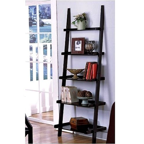 black leaning ladder book shelf