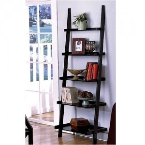 leaning ladder bookcase