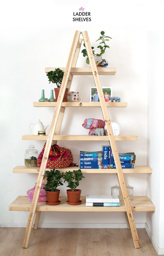 Creative DIY Ladder Shelf
