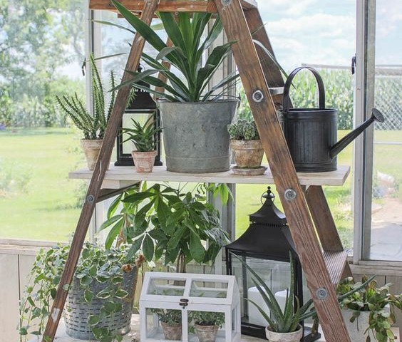 creative diy ladder shelves