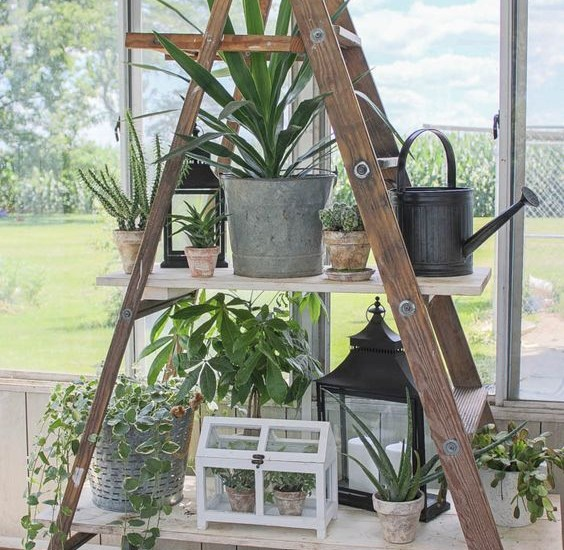 creative diy ladder shelves